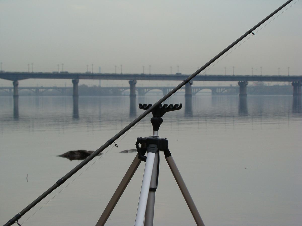 Фидерная ловля на реке